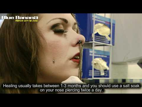 Septum Piercing: How to Get Nose Piercings With Blue Banana