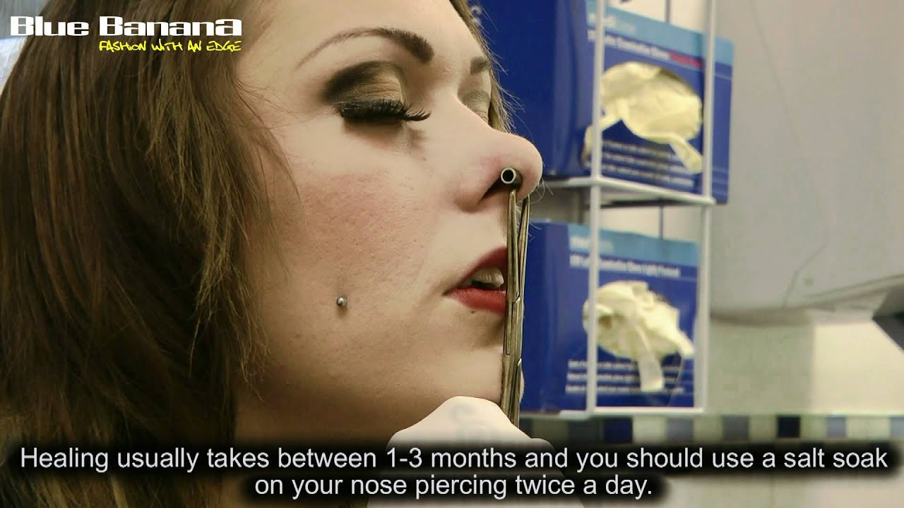 Septum Piercing How To Get Nose Piercings With Blue Banana Youtube