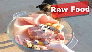 Dog Eating Raw Turkey Neck, Chicken Feet, Pork Skin, Blueberry, Quail Egg