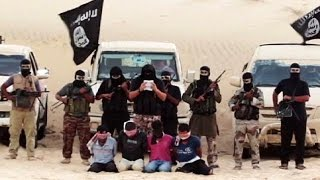 Une milice égyptienne prête allégeance à l'organisation État islamique