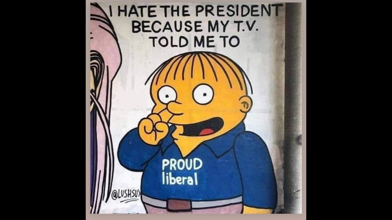 I hate the president because my TV told me to