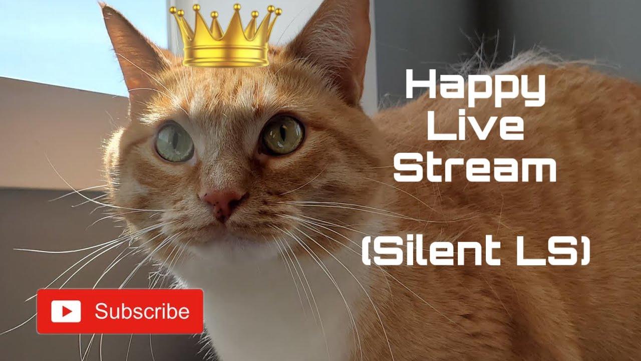 Happy! Stream