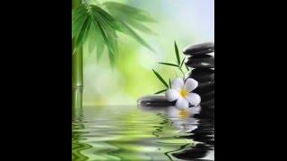Karunesh - музыка для релакса и медитации