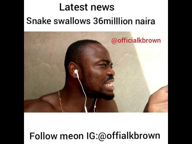 Snake swallows 36million Naira inside jamb office #1