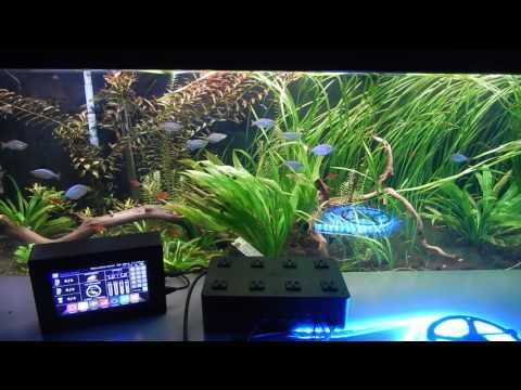 Robo Tank Diy All In One Aquarium Controller Everythi