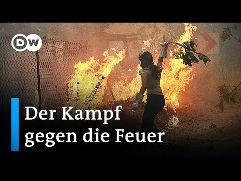 Verheerende Waldbrände in Griechenland und der Türkei | DW Nachrichten