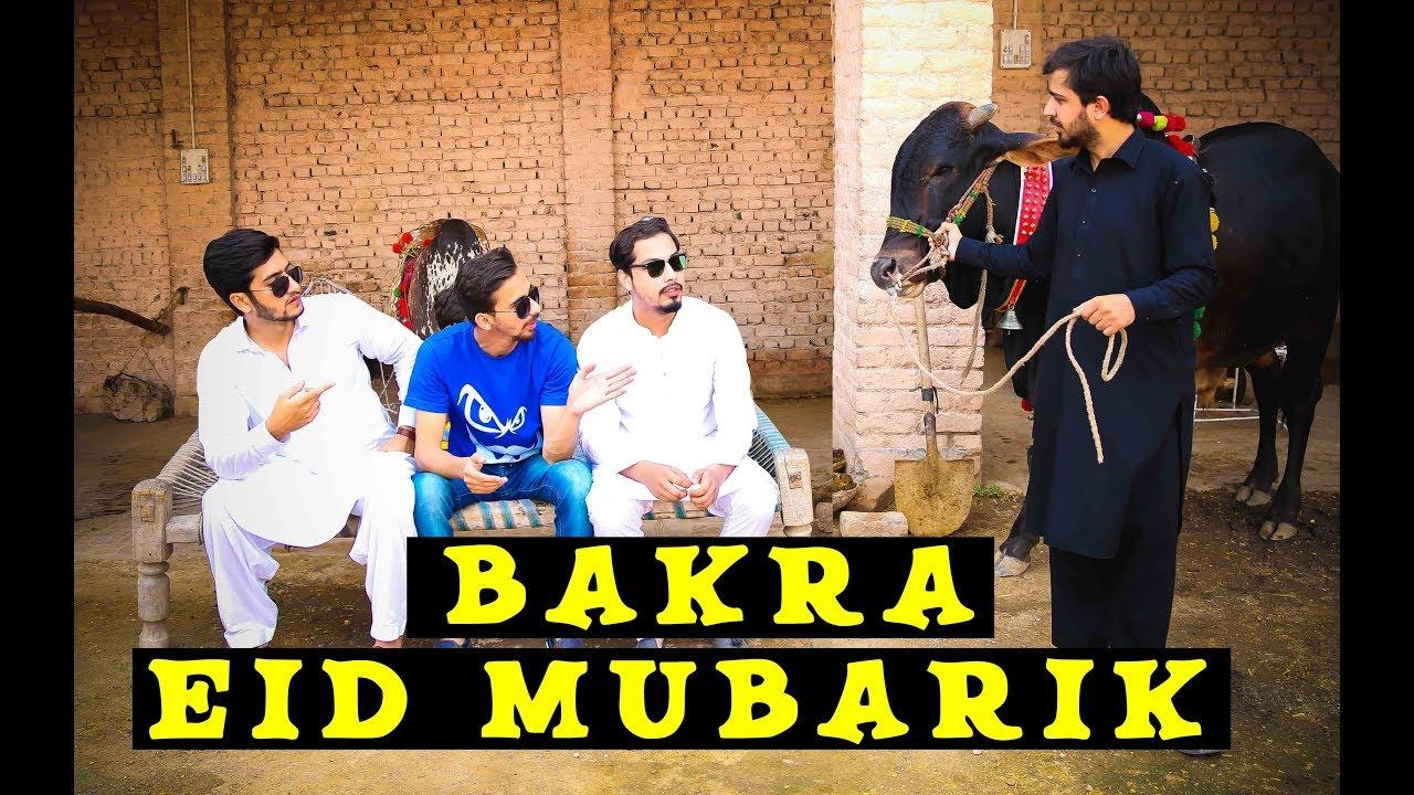 Download Bakra Eid mubarik 2018 By Peshori Vines Official
