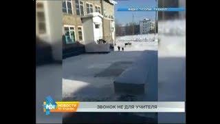 видео В Волгограде на ребенка напала бродячая собака