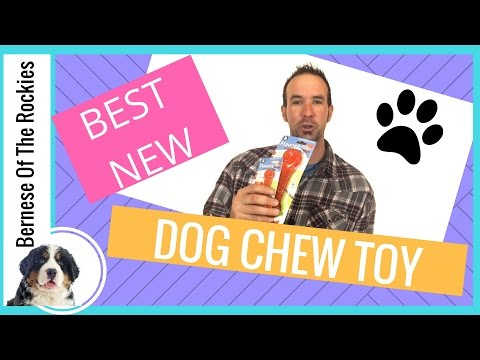 Best Dog Chew Toy of 2017 (For Puppies Too!)