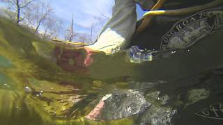 Ozarks River Adventure: Spin-fishing Smallmouth Bass