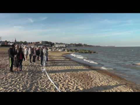 Whale washed up in Felixstowe