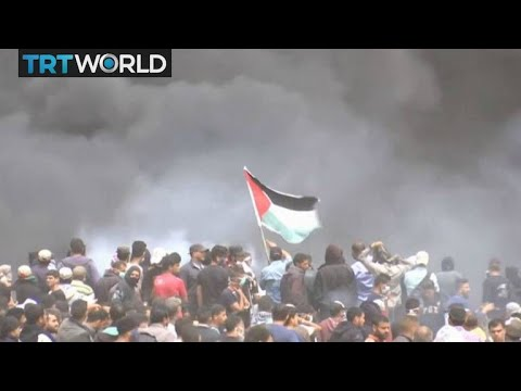 Israel-Palestine Tensions: Young boy among four dead in Friday's protests
