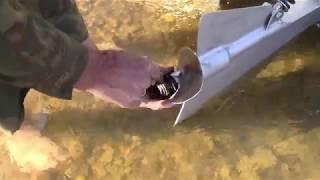 Russian Metal Shark Boats., привод Арнесона,  69 км.ч. Катер  АЛ Ш 86 л.с. ,двигатель хонда L13А