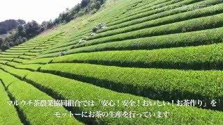 マルウチ茶農業協同組合 2016
