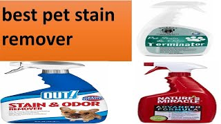 Best Pet Stain Remover 2021