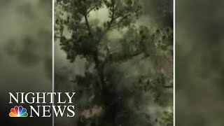 Doctors Warn Of High Pollen Counts This Allergy Season | NBC Nightly News