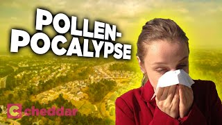 How Humans Caused Our Own Allergies - Cheddar Explains