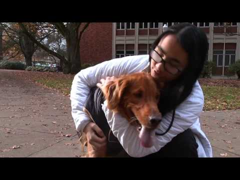 Puppy Power: The Story of A Girl and Her Dog