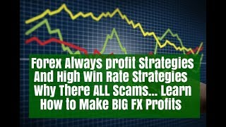 Forex Always Win Strategy Why there Scams