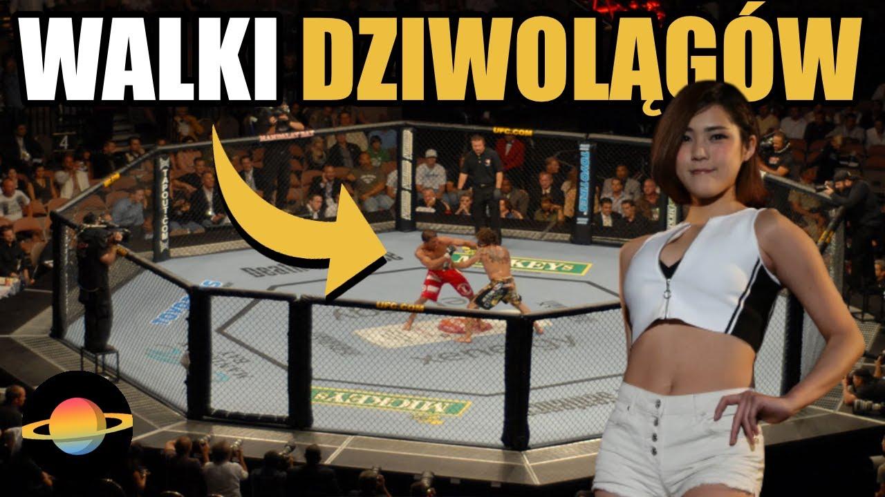 10 ciekawostek o MMA, o których nie wiedzą zwykli śmiertelnicy