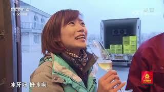 [远方的家]最美是家乡——黑龙江 冰天雪地中的美酒佳酿| CCTV中文国际 - YouTube