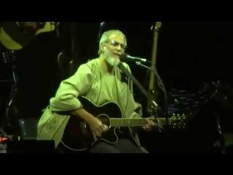Cat Stevens/Yusuf Islam - Morning Has Broken [Live Movistar Arena Chile 28-11-2013]