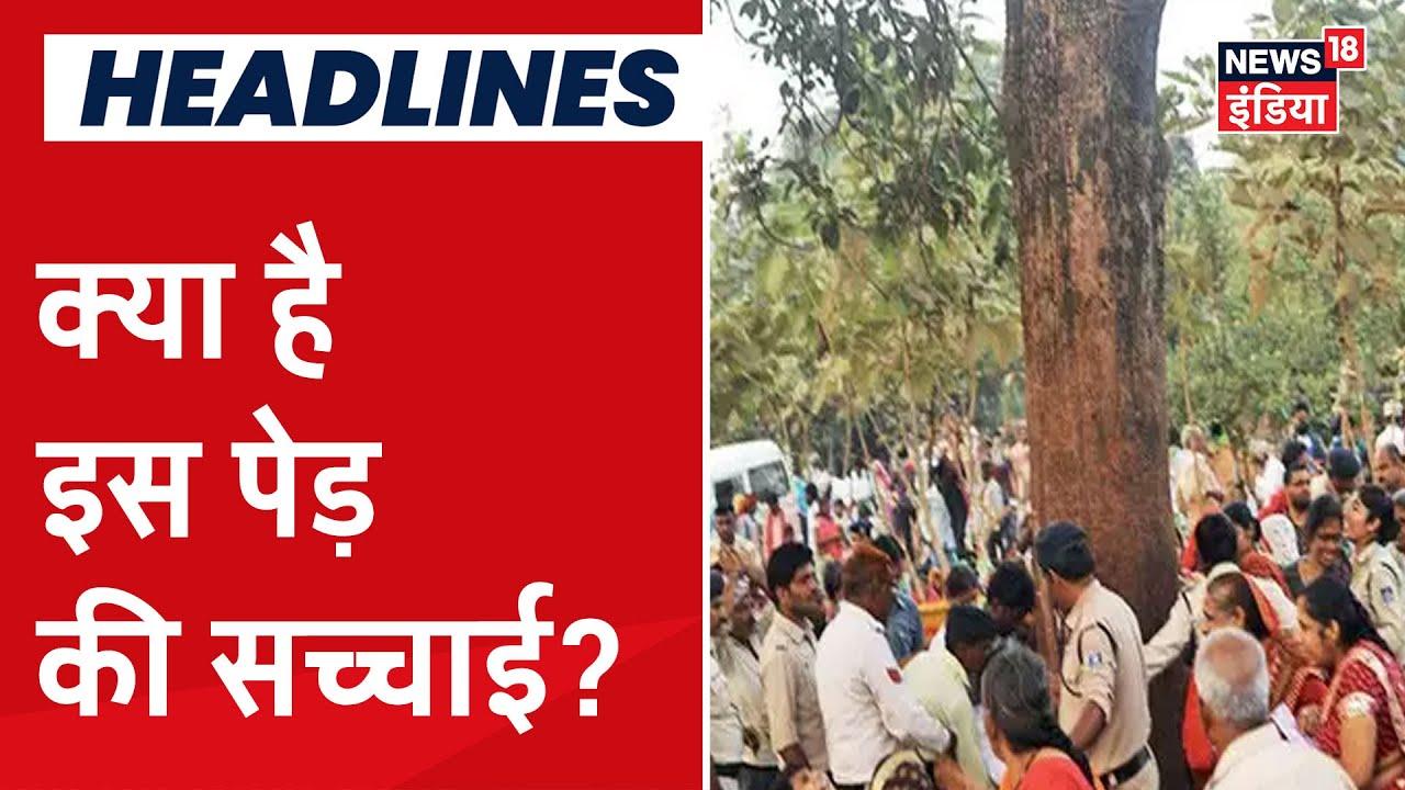 क्या सच में इस पेड़ के द्वारा ठीक हो जाते हैं बड़े -बड़े रोग? | Aadhi Haqeeqat Aadha Fasana|