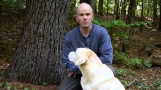 Dave Falkenham, retired Grafton County Extension Forester