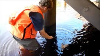 Stress Wave Timer - Timber Bridge Inspection
