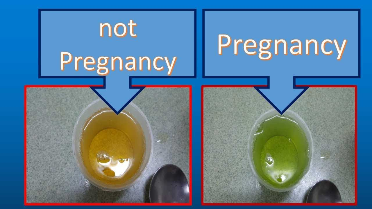 homemade pregnancy test with vinegar