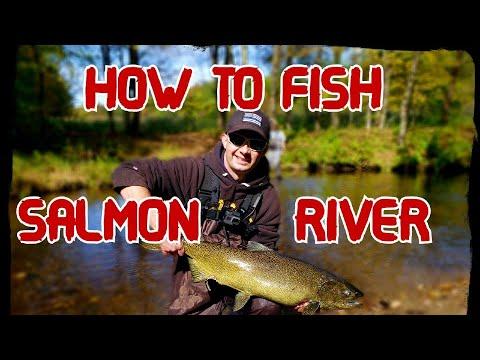 Salmon River Fishing Basics | Beginners Guide To The Salmon River In Pulaski NY