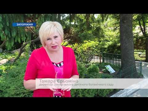 Телеканал TV5: У Запорізькому ботанічному саду створять виставковий майданчик