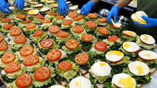 신선한 채소로 만드는 샌드위치계 끝판왕! / 미친듯이 …