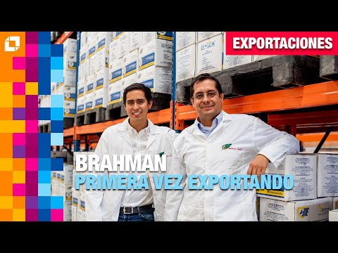 Brahman, Exporta Margarina Por Primera Vez De La Mano De ProColombia
