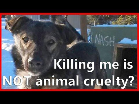 Alaska Animal Cruelty Law Petition #sleddogsmatter