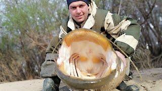 Сом 27 кг Караси на поплавок и спиннинг Рыбалка весной