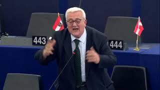 Borghezio a Strasburgo sul caso Embraco: Vergogna