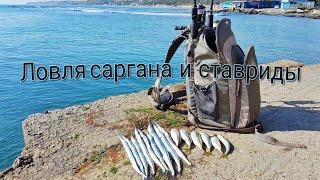 ловля саргана на пилькер и ставриды на силиконовые приманки в Черноморске