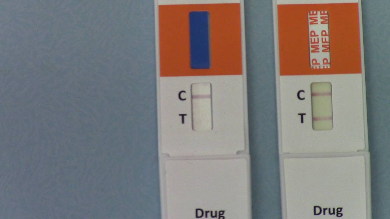 Positive and negative drug test results  A guide to interpreting urine drug  test kit results