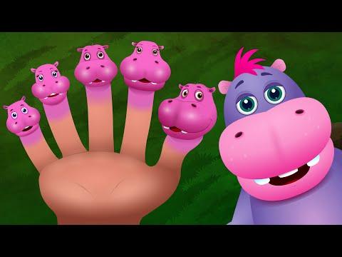 Familia Dedo Hipopótamo | Familia de Dedos Animales Canciones Infantiles en Español | ChuChu TV