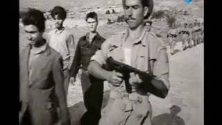 Δημοκρατικός Στρατός Ελλάδας 1946 1949