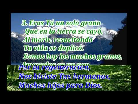 Himno 93