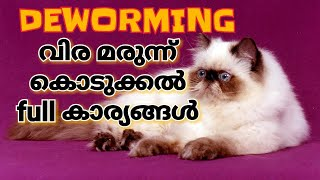 How To Deworm A Persian Cat In Malayalam | പൂച്ചയ്ക്ക് എങ്ങനെ വിരമരുന്നു കൊടുക്കാം