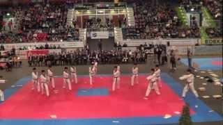 Kukkiwon Taekwondo Vorführung Deutsche Meisterschaft 2013 Ingolstadt
