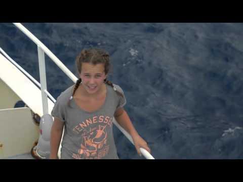 GALAPAGOS SHARKS - YOUNG OCEAN EXPLORERS