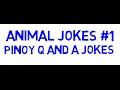Animal Jokes #1 Animated - Pinoy Q and A Jokes
