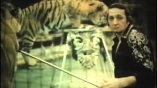 Тигры в жизни второклассника Семенова (1980)