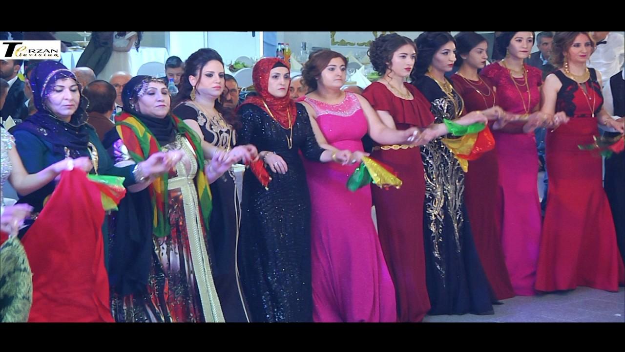 Kurdische hochzeit hannover sänger rojhat terzan television wer denn sonst