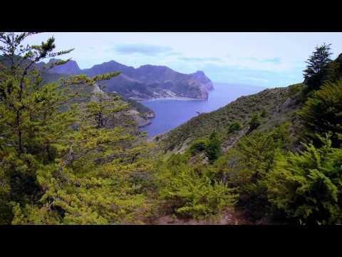 Experience Robinson Crusoe Island
