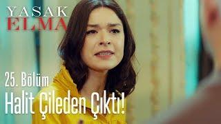 Zehra, Halit'i çileden çıkarttı - Yasak Elma 25. Bölüm